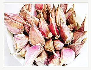 Uiseong Garlic 01