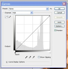 image showing the dialogue for curves box in photoshop