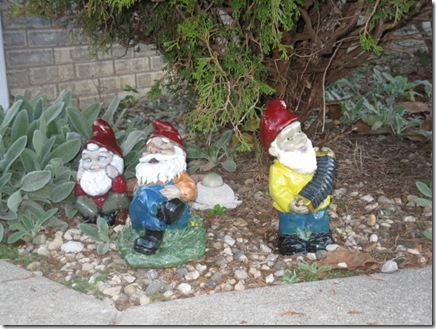 band concert gnomes 038