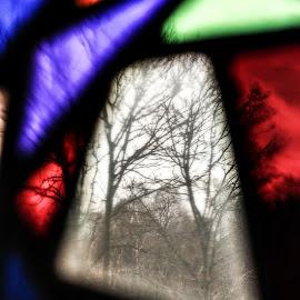 Window patterns by Stephanie Örjas - Abstract Patterns ( red, purple, pattern, window, blue, color, green, trees )