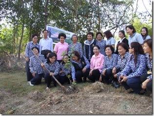 โครงการปลูกต้นไม้เฉลิมพระเกียรติ
