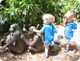 boys with gorillas