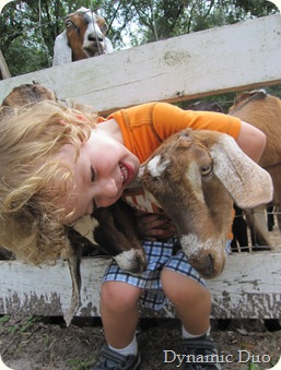 raleigh, really, really, loves him some goat!