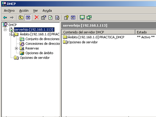Windows Server 2003 Hijo-2010-05-23-02-49-17