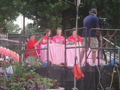 Komen2010 058