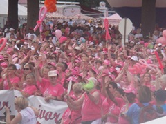 Komen2010 076