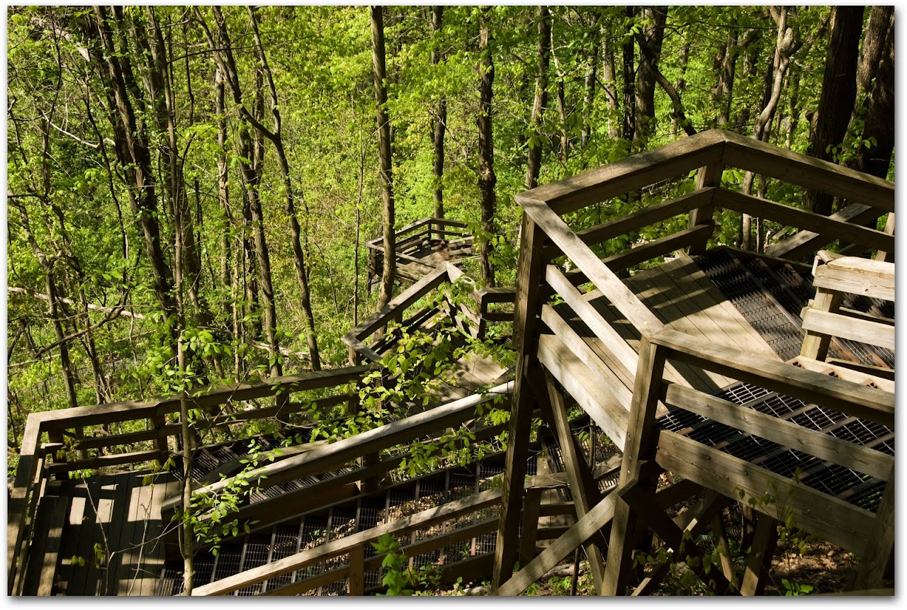 Steps to Amicalola Falls