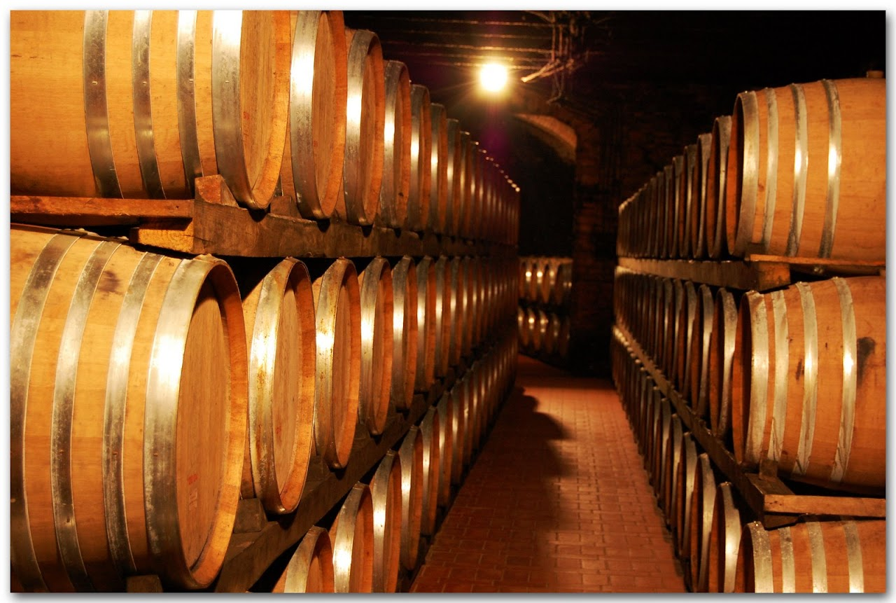 Avignonesi wine casks