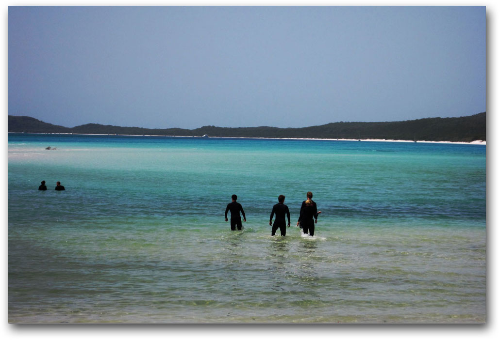 Swimmers at Whitehaven Beach