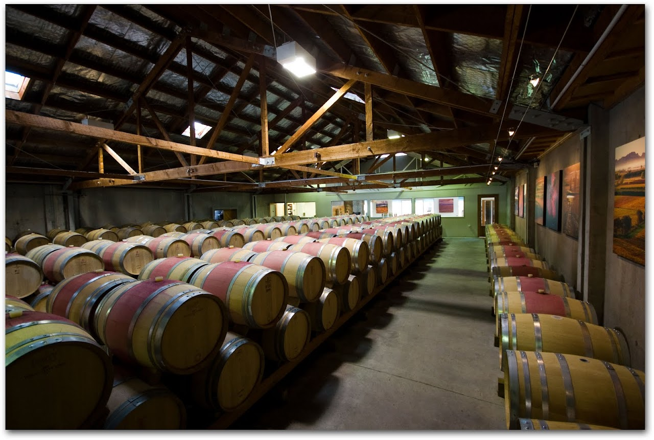 Cloudy Bay wine cellar