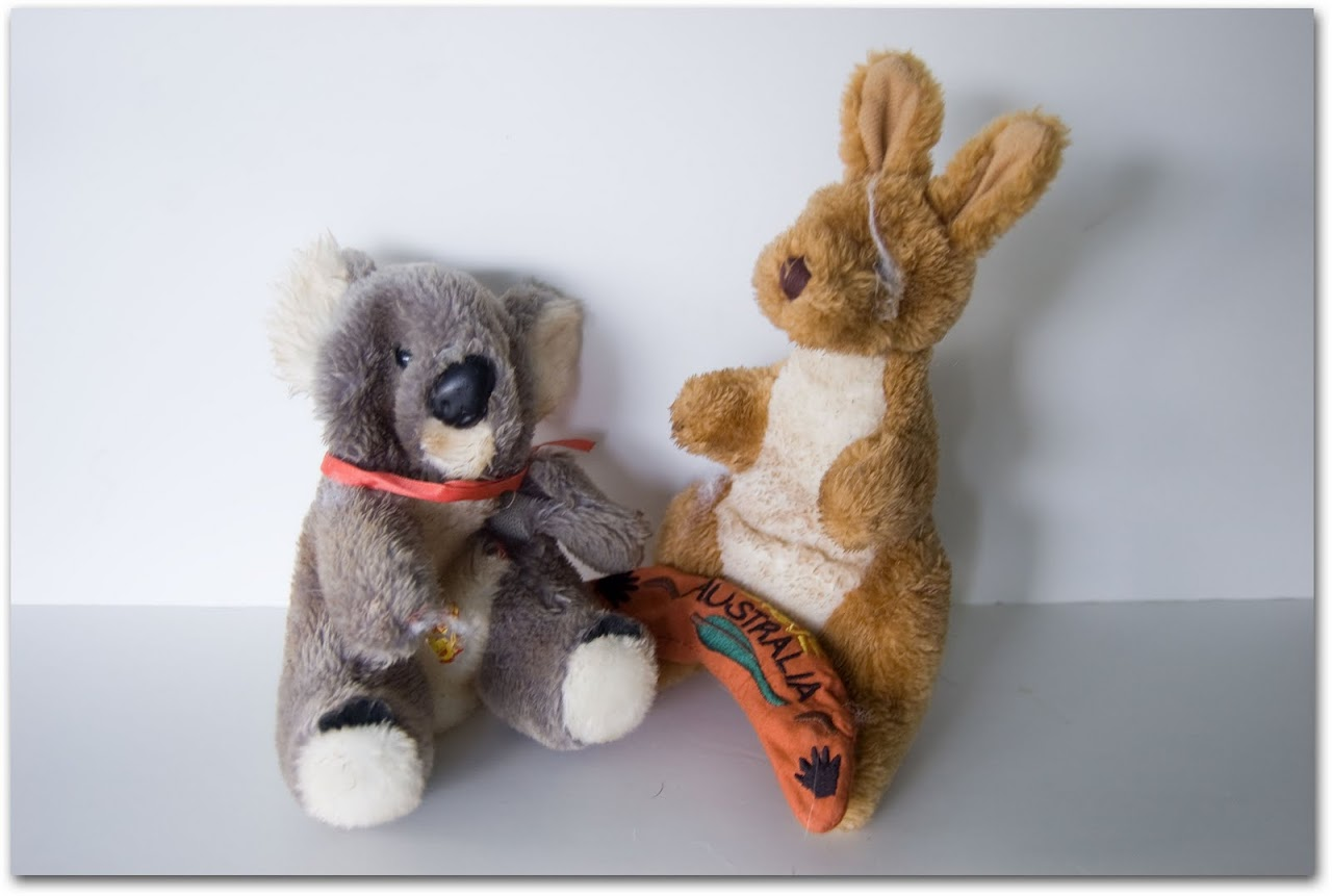 Kangaroo and koala toy