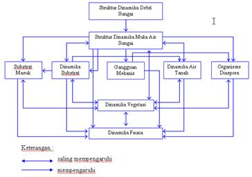 struktur dinamika sungai