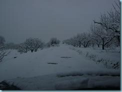 2009 01 03 Νάουσα Χιονόπτωση_004