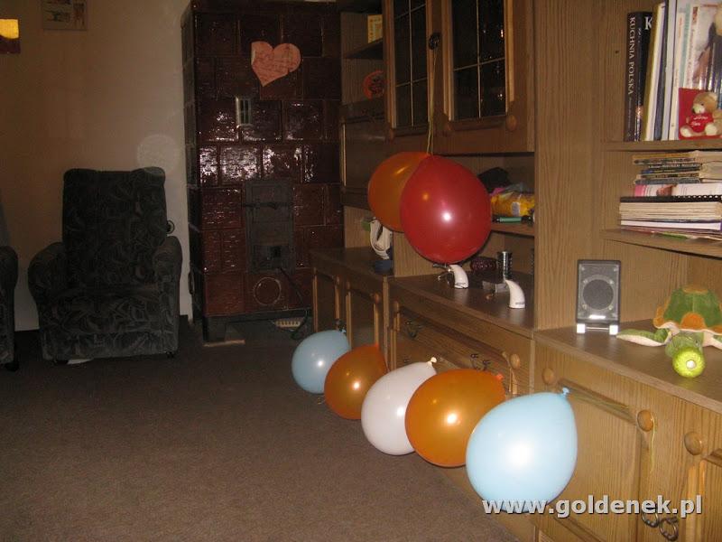 pokój z balonami dla goldenka