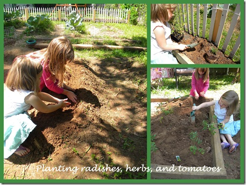 planting veggies collage