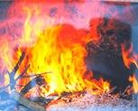 O fogo da lenha para preparar o folar, no forno da Amélia