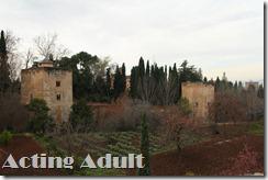 A. Summer palace (46)