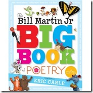 Big Book Martin