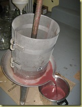 Wine making DiDario 10.09 004