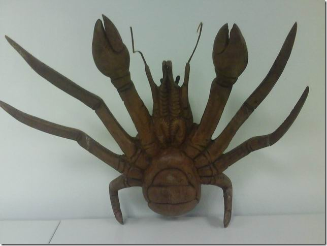 crab or spidy