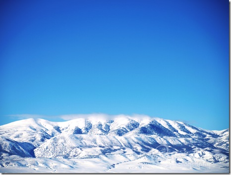 Winter08-1
