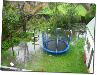 backyardpooloct2010