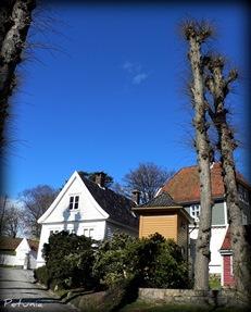 Gamle Bergen 3