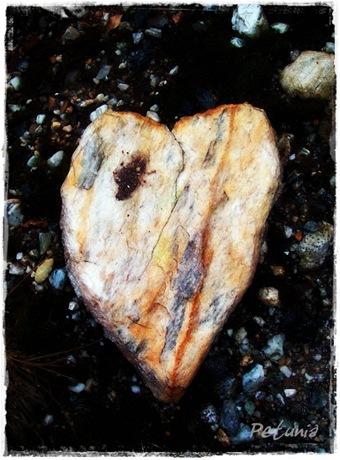 Hjerte 3