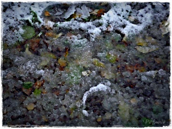 Snø 6