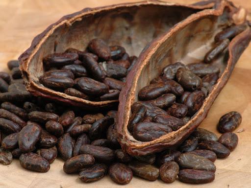 какао 1