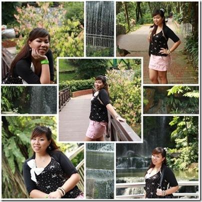 Bird Parkpage-20101113