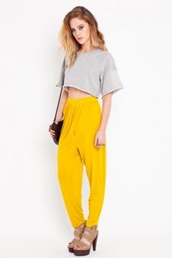 mustard ng2