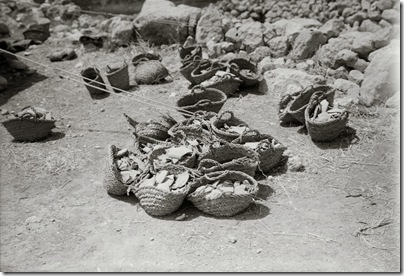 Tell Beit Mirsim, pottery baskets, mat05733