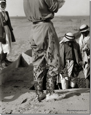 Overseer's trousers covered with locust crawlers, mat02938