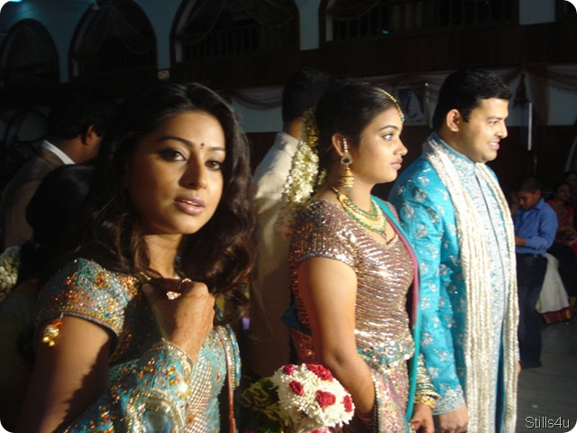 South Indian Actress Snehas Borthers Marriage PhotosTamil Sneha Brothers Wedding Phptossneha Album Tamil