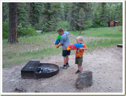 06-06-10 Red River Columbine Campground 14