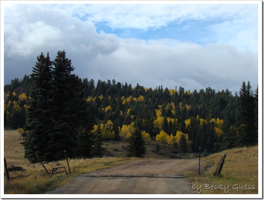 10-22-10 to Taos 50
