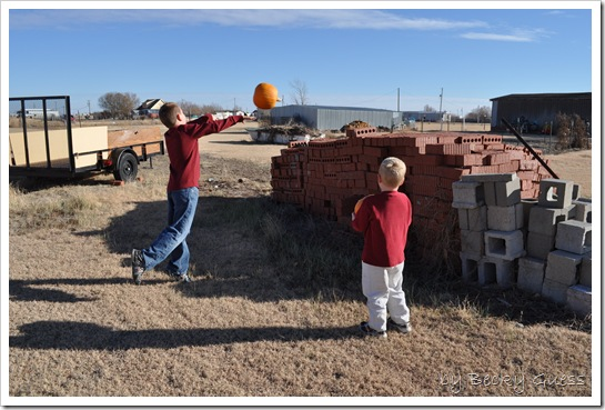 11-25-10 pumpkin chunkin 06