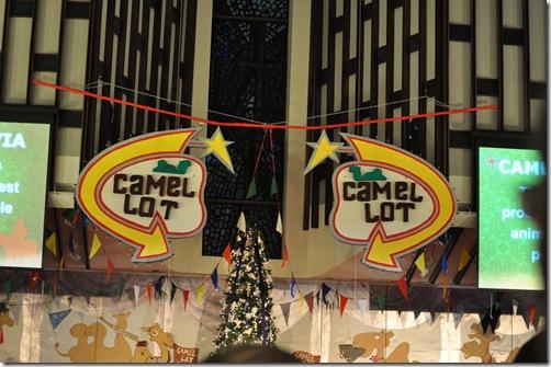 12-05-10 Camel Lot 06