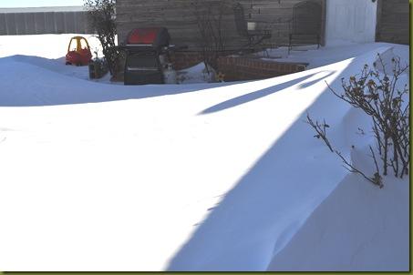 02-10-11 the snow 05