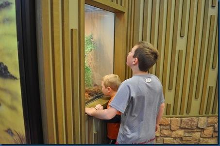 03-15-11 Zoo trip 47