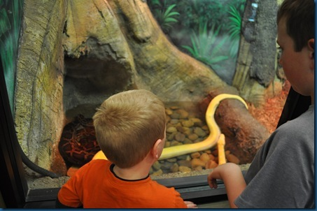 03-15-11 Zoo trip 51
