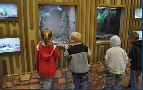 04-28-11 Zoo 007