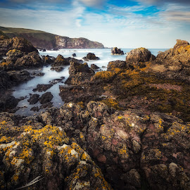 Needles by Pietro Bevilacqua - Landscapes Caves & Formations ( water, exposure, scotland, cliffs, sea, abbs, beach, north, long, bay, st, day, rocks )