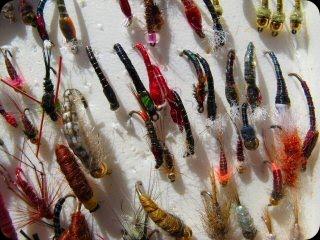 blog_Sept_27-28_2010_4[1]