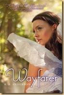 RJ Anderson Book Wayfarer