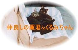 tubasa&kurumi005-2c