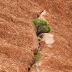 Eine Wunde im Fels