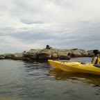Seelöwen beobachten bei Kaikoura