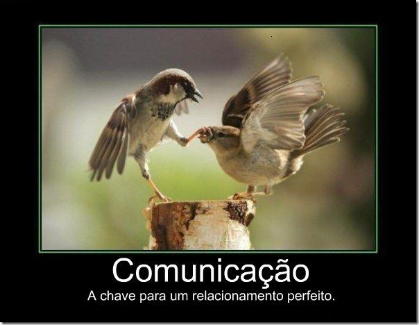 desmotivacional comunicação